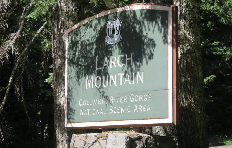 Hiking the Gorge: Larch Mountain