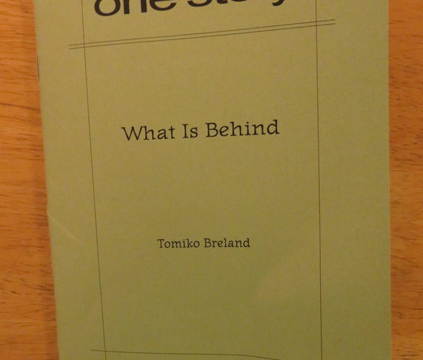"""One Story: """"What is Behind""""  by Tomiko Breland"""