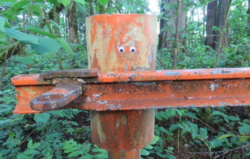 Hike: Forest Park Firelane 15