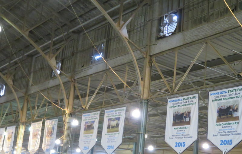 Minnesota State Fair Day One: Let's visit the animals