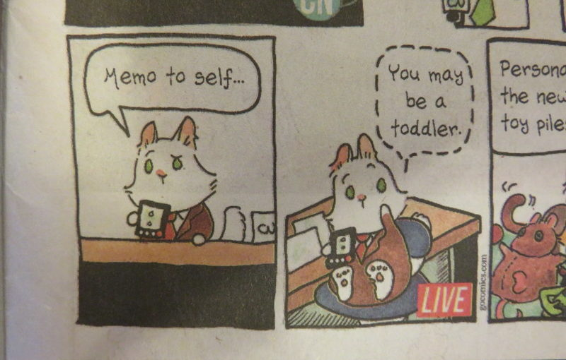 Breaking Cat News is a funny comic.