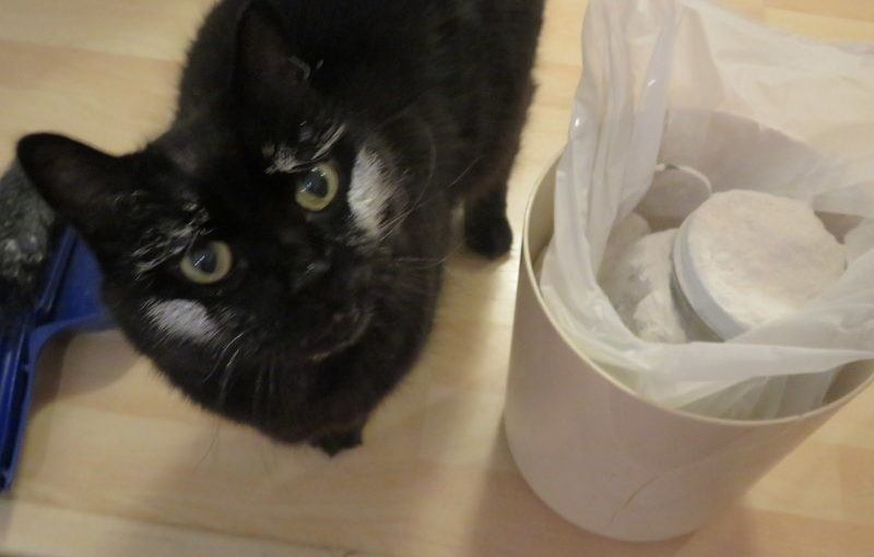 Sentinel investigates flour