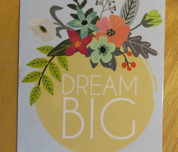 SKS: Dream Big Postcard