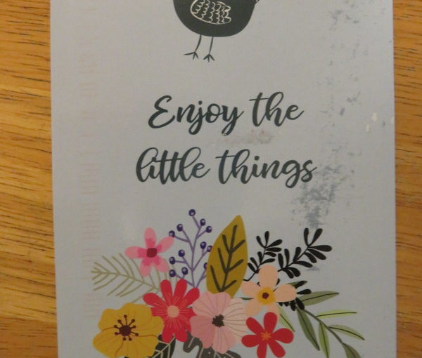 """07 16 SKS Postcard: Enjoy the Little Things"